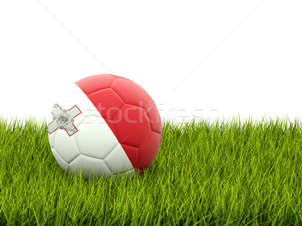 Football with flag of malta Stock photo © MikhailMishchenko