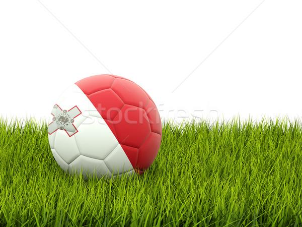 Voetbal vlag Malta groen gras voetbal wereld Stockfoto © MikhailMishchenko