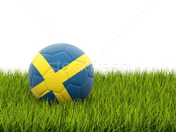 Piłka nożna banderą Szwecja zielona trawa piłka nożna świat Zdjęcia stock © MikhailMishchenko