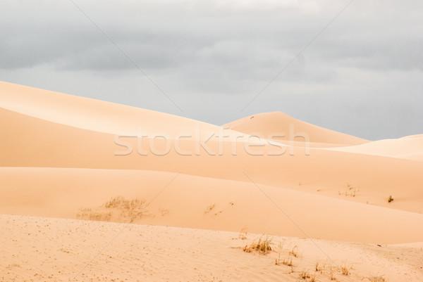 песок пустыне юг путешествия стране желтый Сток-фото © MikhailMishchenko