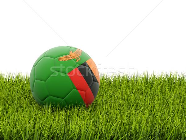 футбола флаг Замбия зеленая трава Футбол Мир Сток-фото © MikhailMishchenko