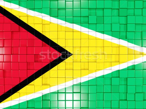 Vierkante onderdelen vlag Guyana 3d illustration mozaiek Stockfoto © MikhailMishchenko