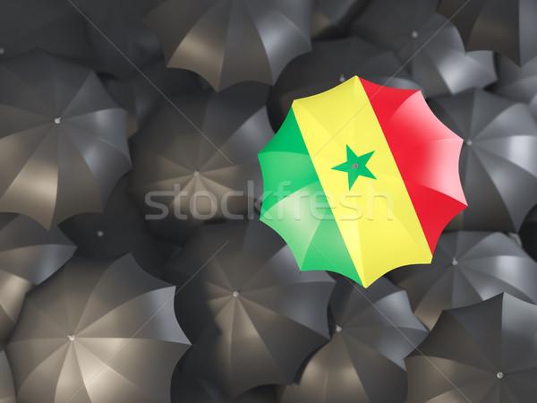 Parapluie pavillon Sénégal haut noir parapluies Photo stock © MikhailMishchenko