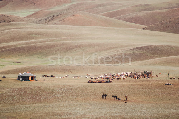 Alashan Plateau semi-desert. Southwest of the Eastern Gobi deser Stock photo © MikhailMishchenko