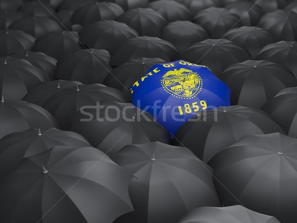 oregon state flag on umbrella. United states local flags Stock photo © MikhailMishchenko