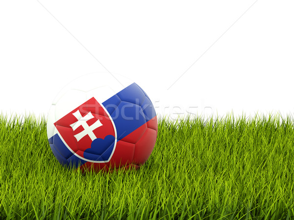 Football with flag of slovakia Stock photo © MikhailMishchenko