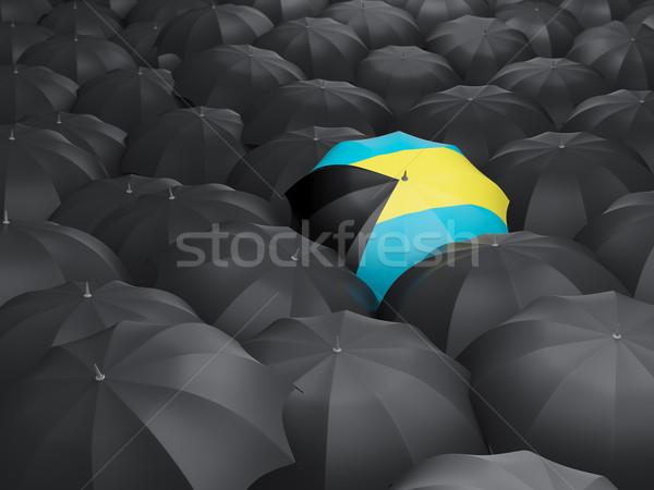 Esernyő zászló Bahamák fekete esernyők eső Stock fotó © MikhailMishchenko
