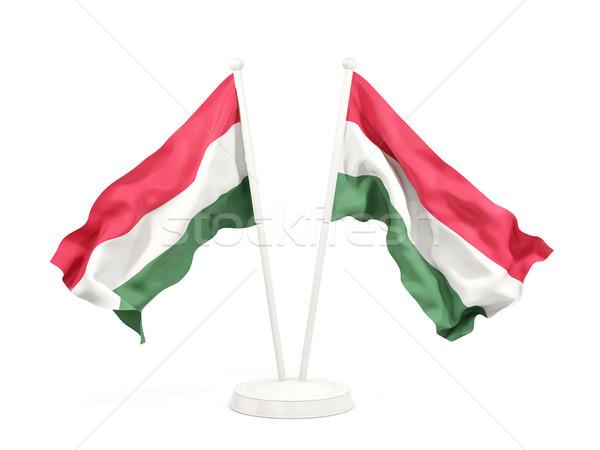 Dois bandeiras Hungria isolado branco Foto stock © MikhailMishchenko