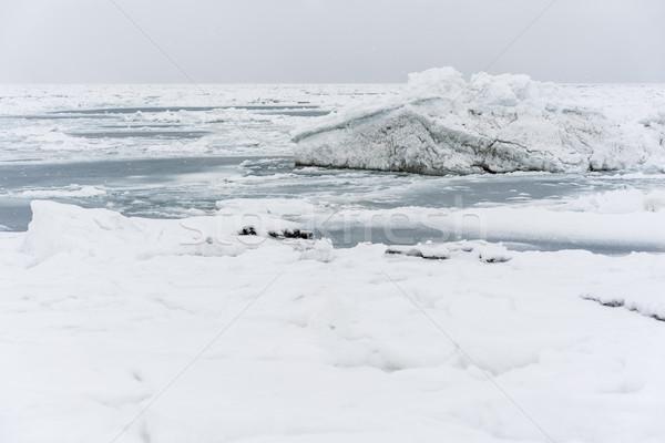 Stock photo: Iceberg at coastline of the Pacific ocean