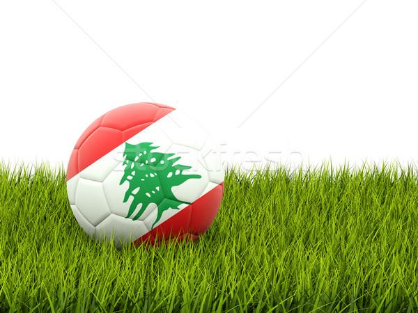 Futball zászló Libanon zöld fű futball mező Stock fotó © MikhailMishchenko