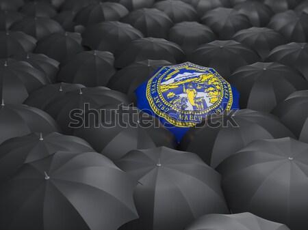 Waszyngton banderą parasol Stany Zjednoczone miejscowy flagi Zdjęcia stock © MikhailMishchenko