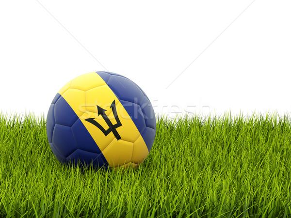 Calcio bandiera Barbados erba verde calcio campo Foto d'archivio © MikhailMishchenko