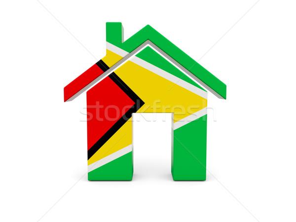 Otthon zászló Guyana izolált fehér keresés Stock fotó © MikhailMishchenko
