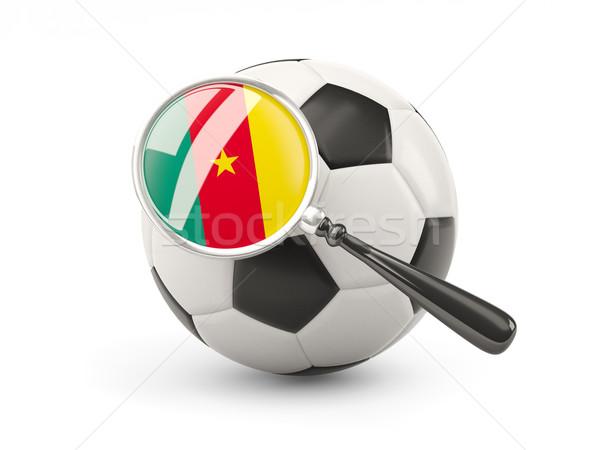 Futebol bandeira Camarões isolado branco Foto stock © MikhailMishchenko