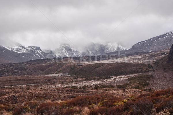 Alpino cenário parque caminhadas Nova Zelândia norte Foto stock © MikhailMishchenko