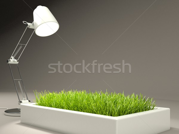 Grass with lamp Stock photo © MikhailMishchenko