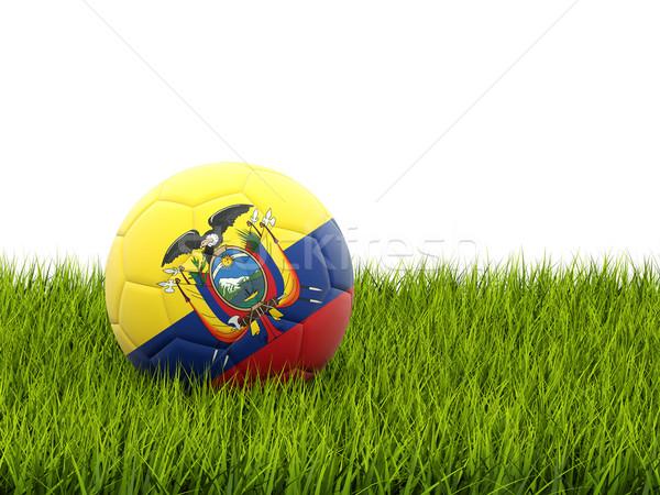 футбола флаг Эквадор зеленая трава Футбол области Сток-фото © MikhailMishchenko