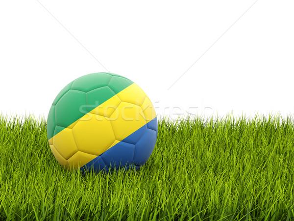 футбола флаг Габон зеленая трава Футбол Мир Сток-фото © MikhailMishchenko