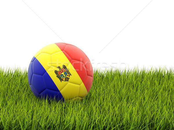 Futball zászló Moldova zöld fű futball mező Stock fotó © MikhailMishchenko