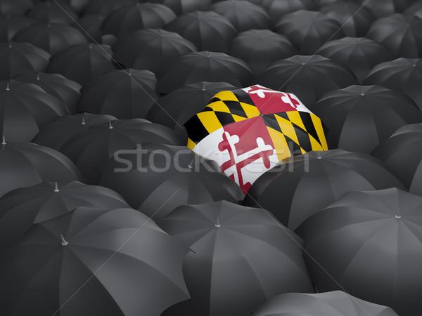 maryland state flag on umbrella. United states local flags Stock photo © MikhailMishchenko