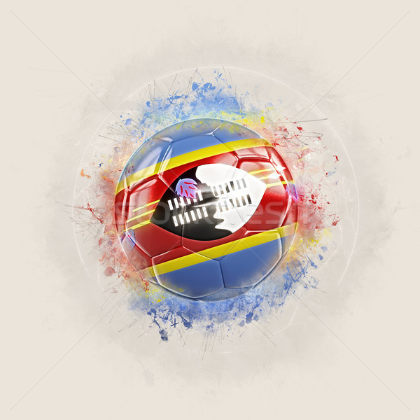 Grunge football with flag of swaziland Stock photo © MikhailMishchenko