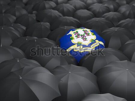 Alasca bandeira guarda-chuva Estados Unidos local bandeiras Foto stock © MikhailMishchenko