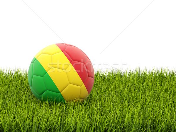 Futbol bayrak Mali yeşil ot futbol dünya Stok fotoğraf © MikhailMishchenko