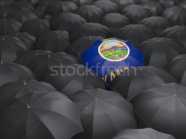 kansas state flag on umbrella. United states local flags Stock photo © MikhailMishchenko
