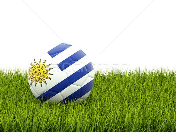 サッカー フラグ ウルグアイ 緑の草 サッカー フィールド ストックフォト © MikhailMishchenko