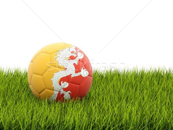 Foto stock: Futebol · bandeira · Butão · grama · verde · futebol · mundo