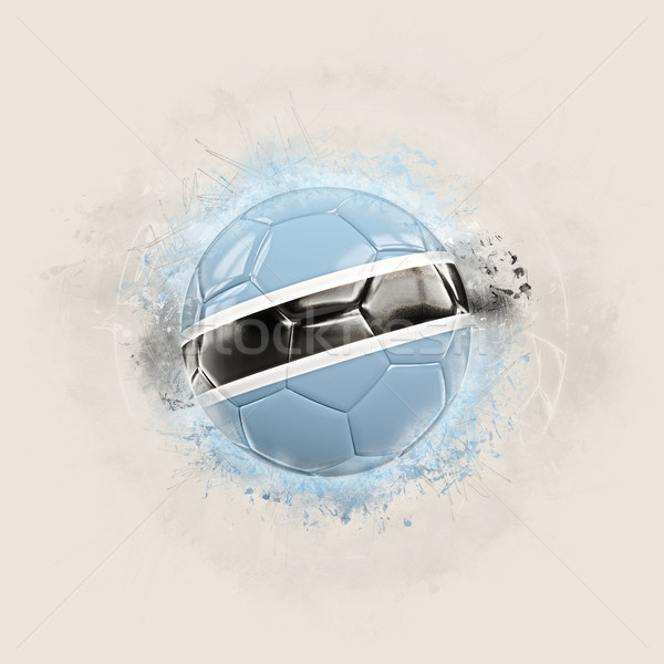 Grunge piłka nożna banderą Botswana 3d ilustracji świat Zdjęcia stock © MikhailMishchenko