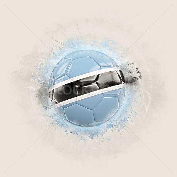 Grunge futbol bayrak Botsvana 3d illustration dünya Stok fotoğraf © MikhailMishchenko