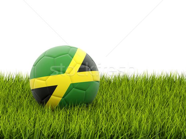 Futball zászló Jamaica zöld fű futball mező Stock fotó © MikhailMishchenko