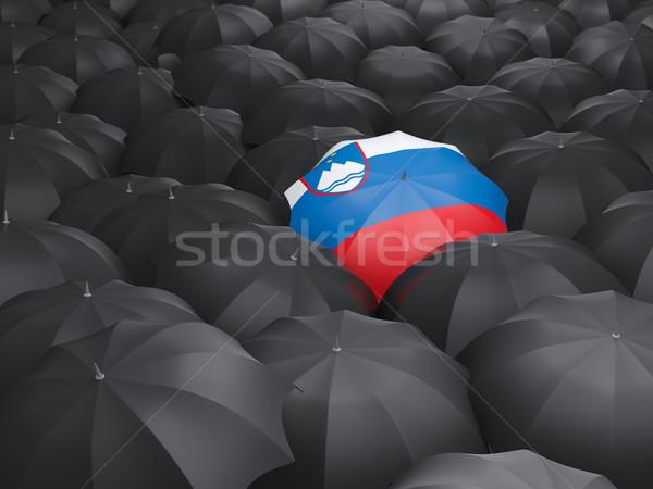 зонтик флаг Словения черный дождь Сток-фото © MikhailMishchenko