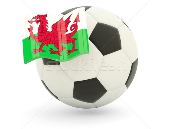 Fútbol bandera gales aislado blanco deporte Foto stock © MikhailMishchenko