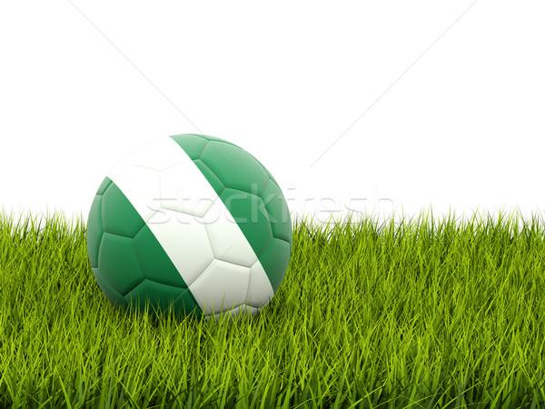 Futbol bayrak Nijerya yeşil ot futbol alan Stok fotoğraf © MikhailMishchenko