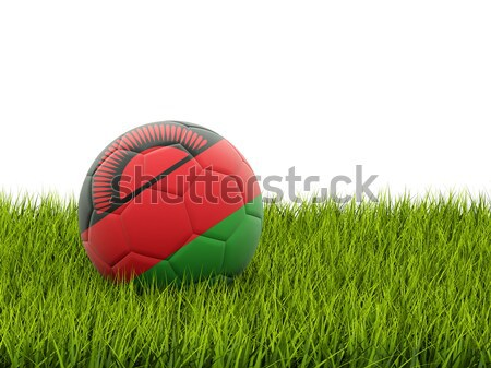 Football with flag of malawi Stock photo © MikhailMishchenko