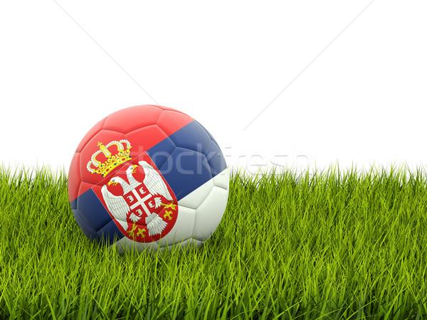 Fútbol bandera Serbia hierba verde fútbol mundo Foto stock © MikhailMishchenko