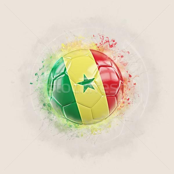 Grunge futball zászló Szenegál 3d illusztráció világ Stock fotó © MikhailMishchenko