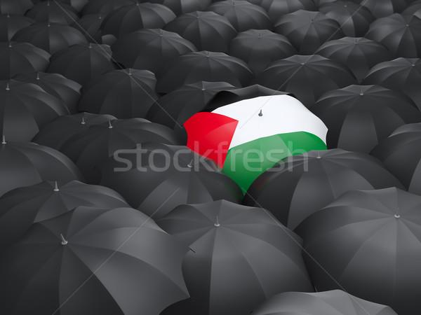 Umbrella with flag of palestinian territory Stock photo © MikhailMishchenko