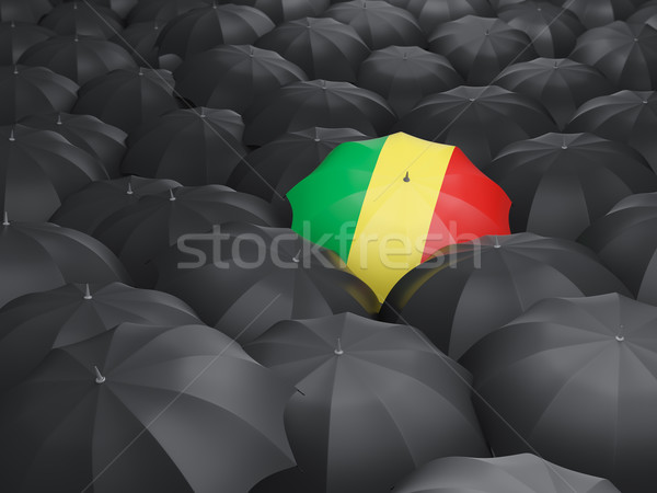 şemsiye bayrak cumhuriyet Kongo siyah Stok fotoğraf © MikhailMishchenko