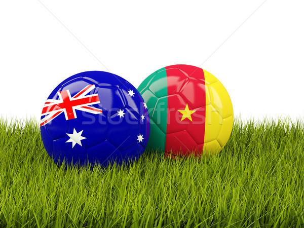 два флагами зеленый зеленая трава 3d иллюстрации Футбол Сток-фото © MikhailMishchenko