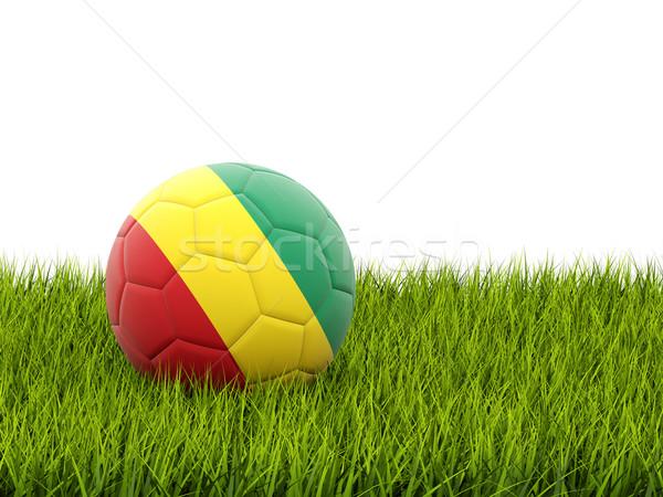 Futball zászló Guinea zöld fű futball világ Stock fotó © MikhailMishchenko