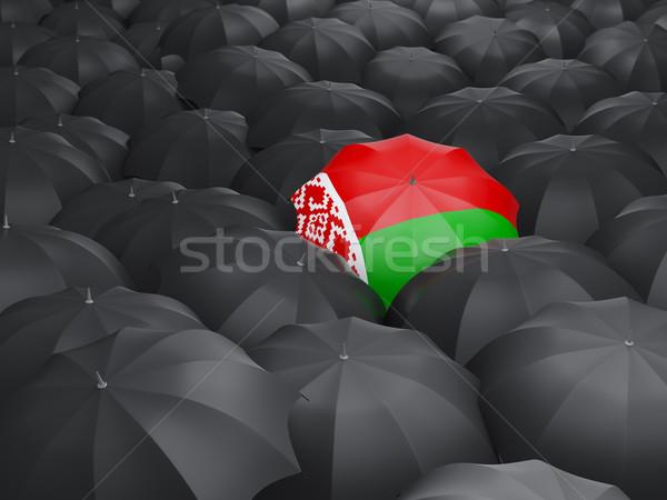Umbrella with flag of belarus Stock photo © MikhailMishchenko