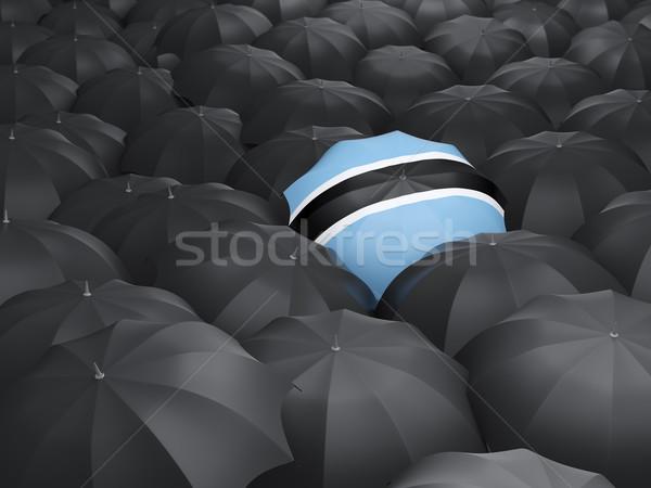 şemsiye bayrak Botsvana siyah yağmur Stok fotoğraf © MikhailMishchenko