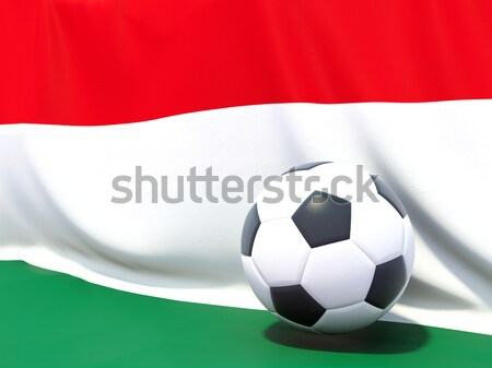 Flag of comoros with football in front of it Stock photo © MikhailMishchenko