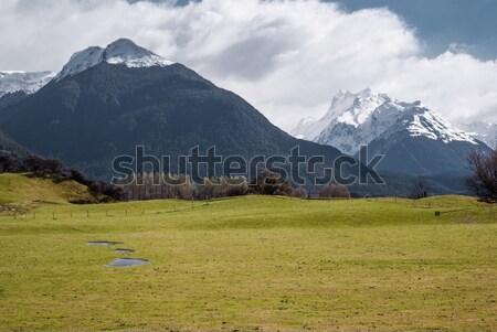Alpejski dekoracje parku turystyka nowego Nowa Zelandia Zdjęcia stock © MikhailMishchenko