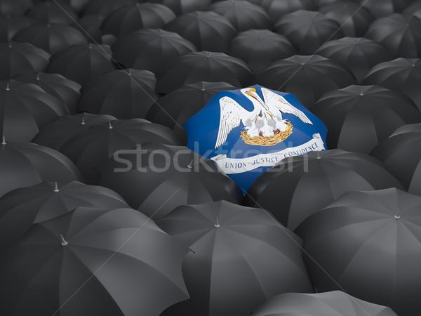 Louisiana bayrak şemsiye Amerika Birleşik Devletleri yerel bayraklar Stok fotoğraf © MikhailMishchenko