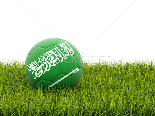 Futball zászló Szaúd-Arábia zöld fű futball mező Stock fotó © MikhailMishchenko