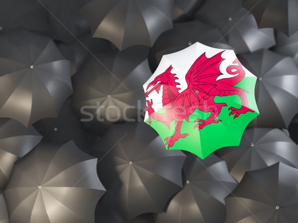 Umbrella with flag of wales Stock photo © MikhailMishchenko